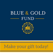 Blue & Gold Fund