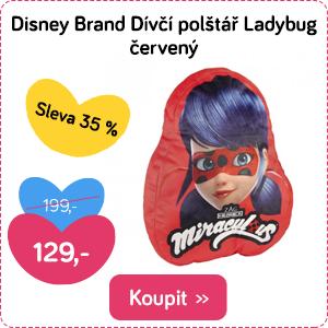 Dětský polštář Disney Beruška